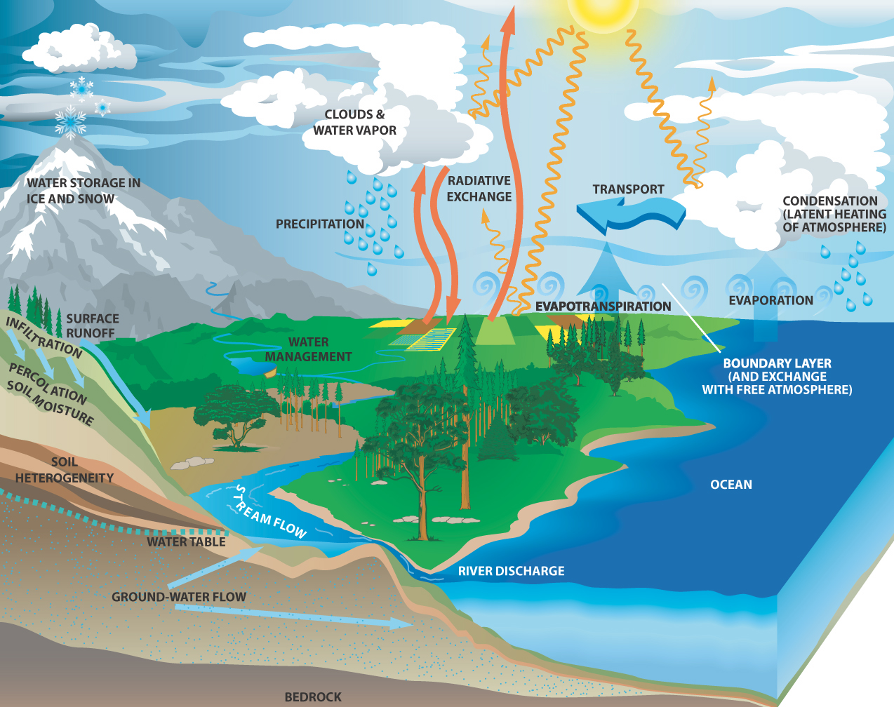 The water cycle diagram prentice hall block and schematic diagrams water cycle biology geology 4 eso 2011 12 rh bio4esobil2011 wordpress com simple water cycle diagram water cycle diagram label ccuart Gallery