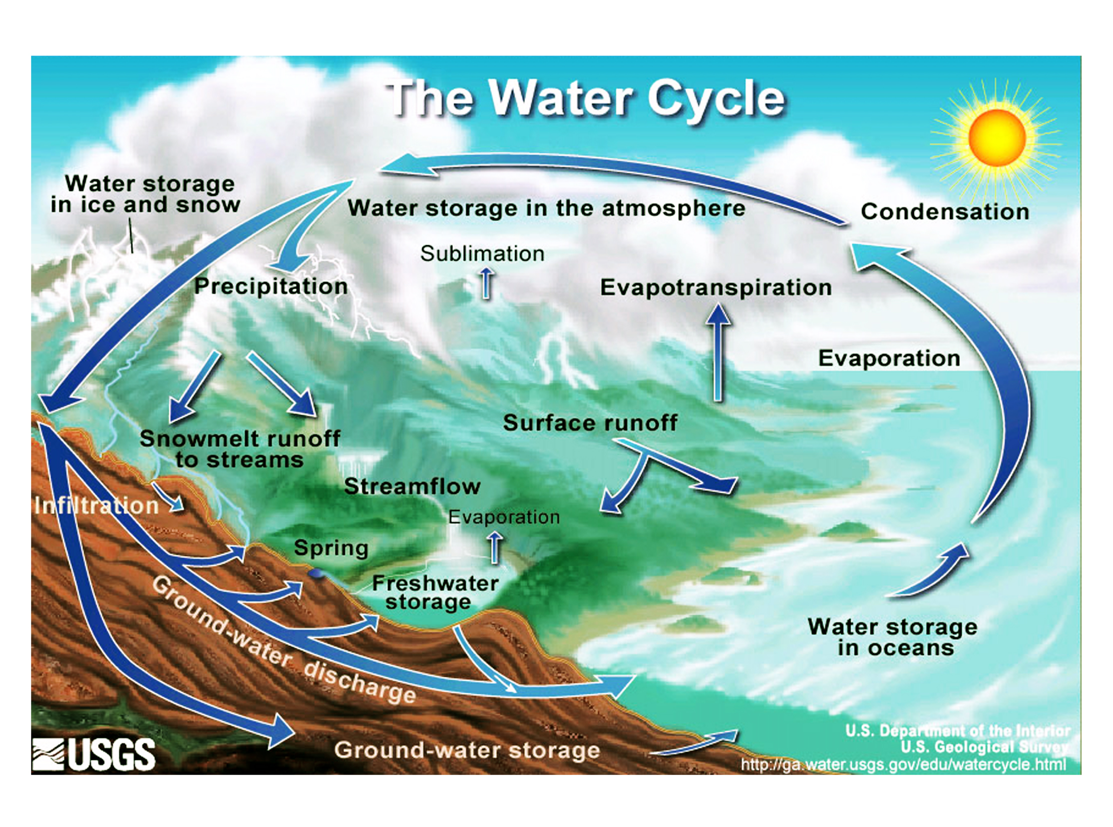 Water Cycle With Transpiration Precipitation Condensation Evaporation ...